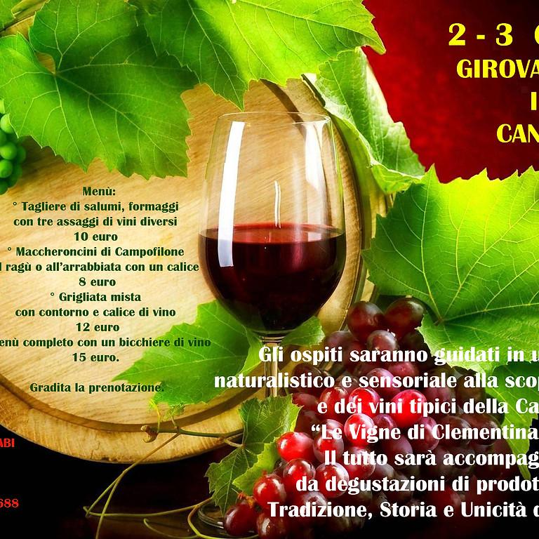 Visite guidate in cantina con degustazione dei vini