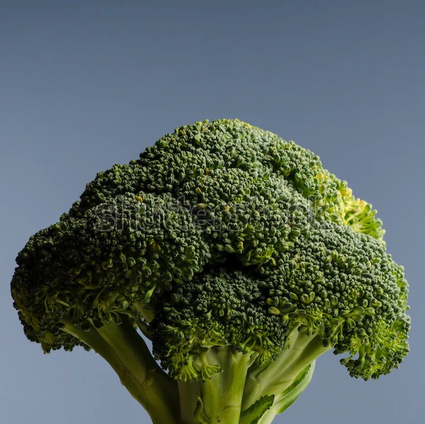 """broccoli for HCG diet protocol"" hcg foods, hcg diet, hcg recipes"