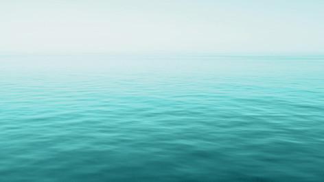 Eine einmalige Unterwasserwelt, tauchen sie ein !!!