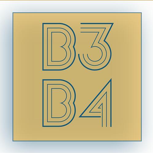 B3B4 (debut album) Compact Disc