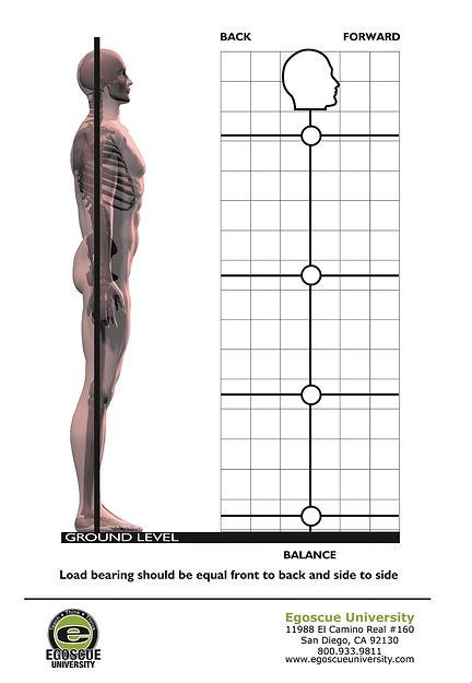 Back Pain Relief | Egoscue Method | Painreliefspecialist4u