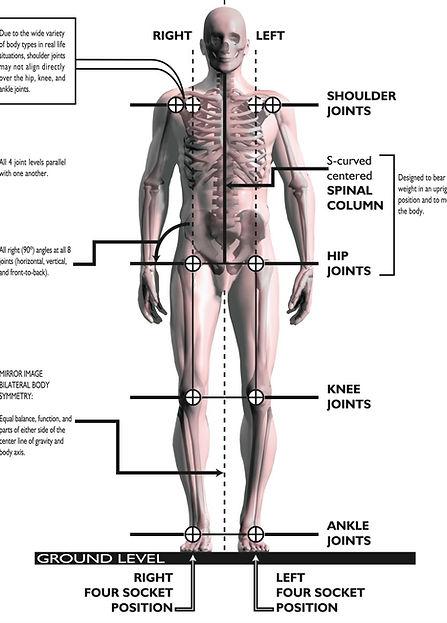 Back Pain Relief | London & Essex | Egoscue | Painreliefspecialist4u