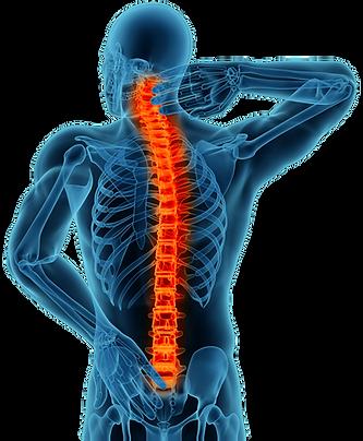 Back & Shoulder Pain Relief
