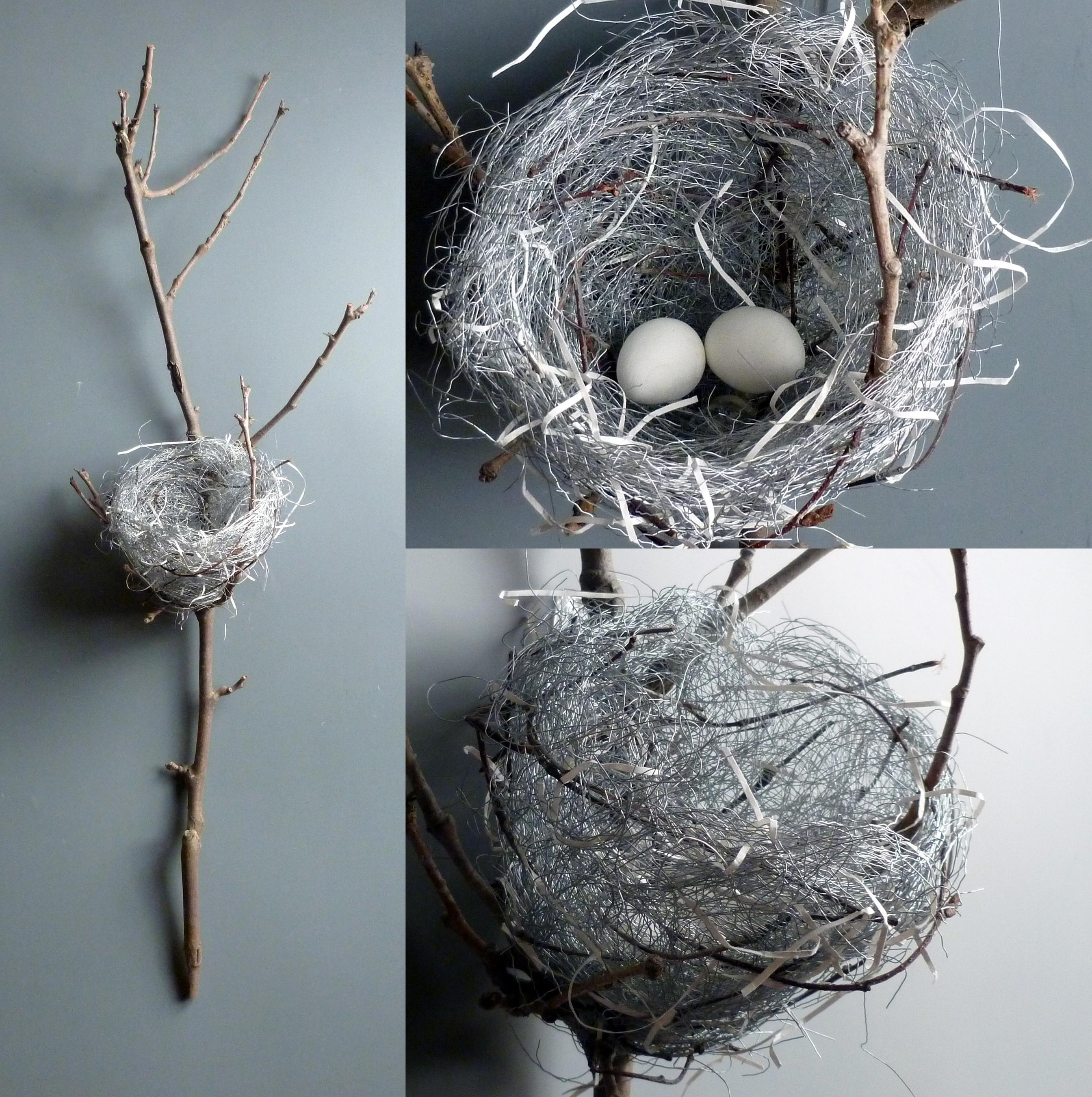 Nest_2 eggs.jpg