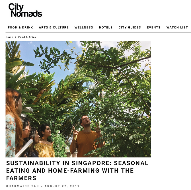 27 August 2019 - City Nomads.png