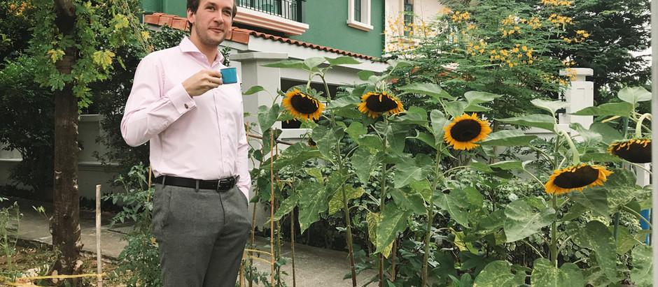 The 10-minute Gardener
