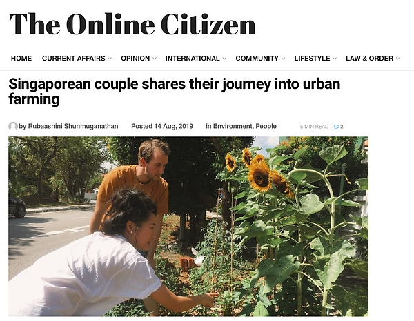14 August 2019 - The Online Citizen.png