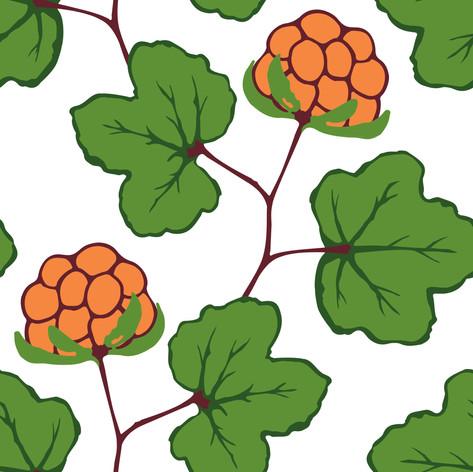 Annahorling_Cloudberries_Green_organge.j