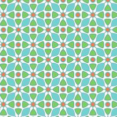 seedcapsulepresentation.jpg