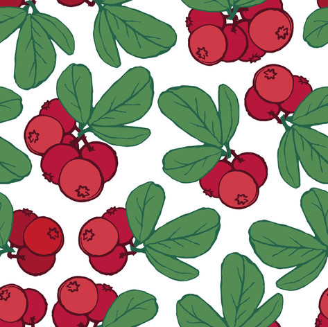 Annahorling_Lingonberries_1.jpg