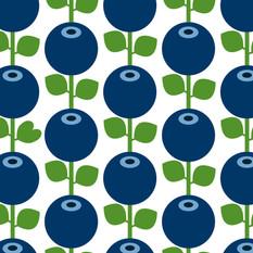 myflorydwelin_blueberry.jpg