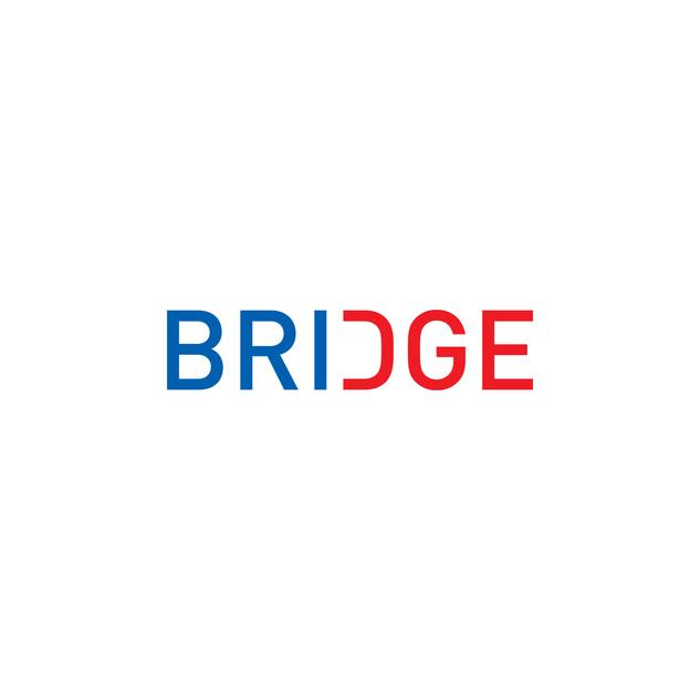Bridge SNF