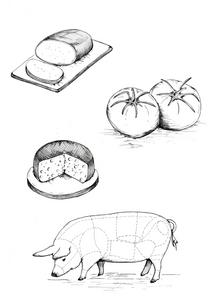 Illustration SK PH.png