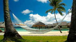 Swingers Wanted:  It's National Hammock Day