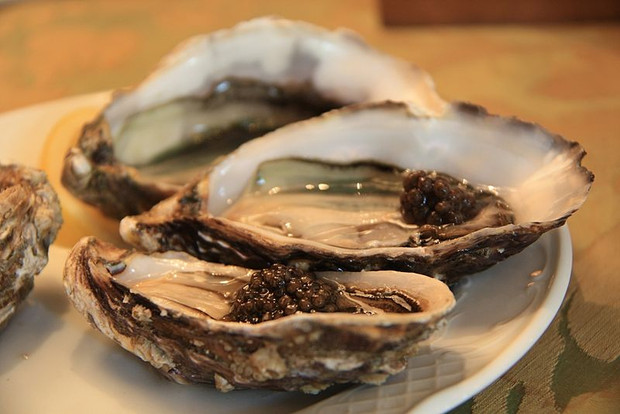 Shuck It:  It's National Oyster Day