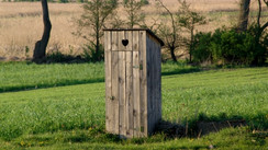 World Toilet Day:  Crappy holiday shines spotlight on serious issue
