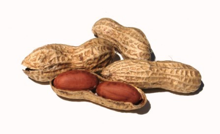 National Peanut Day:  Go nuts!