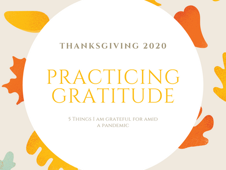 Practicing Gratitude: 5 Things I Am Grateful For In 2020