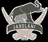 Jabulani_edited.png