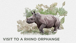 13 rhino orphanage website2.jpg