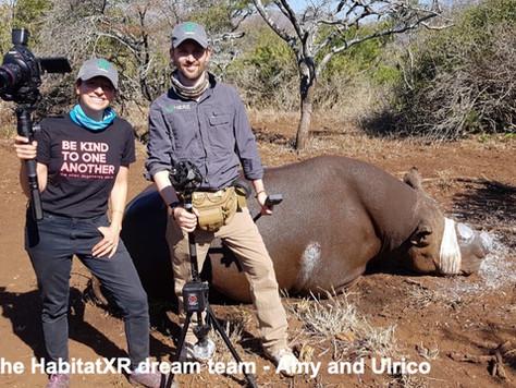 Virtual Volunteer Trip Protects Wildlife during COVID