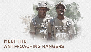 09 rangers website.jpg