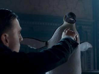 4.Pinguino.png