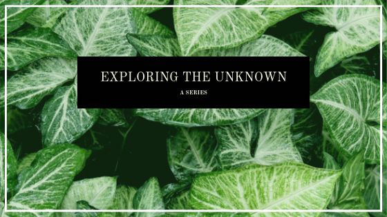 Exploring the Unknown: A Series