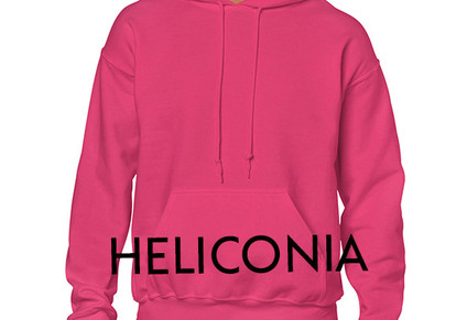 Colour Choice: Heliconia Pink