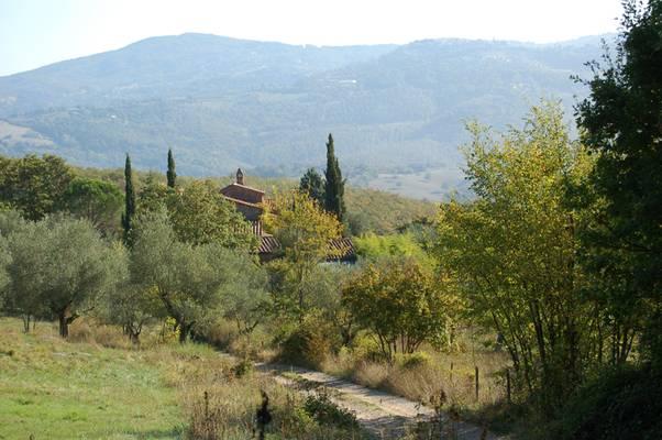 Grundstück Casa Simoncelli