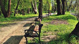 Alejka nad stawem w parku