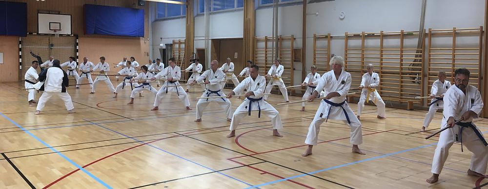 2019 Kongo-ryu Kobudo Seminar in Sweden by Soke Sakagami