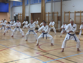 2019 Kobudo Seminar in Sweden by Sensei Sakagami