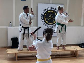 Kongo-ryu seminar in Sweden