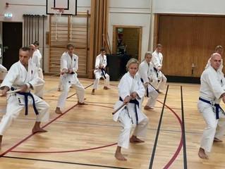 Sweden - Ryukyu Kobudo Kongo Ryu Seminar February 2020