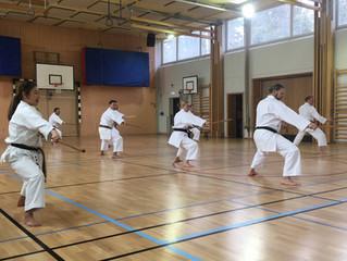 Ryukyu Kobudo Kongo-ryu Seminar in Sweden! スウェーデンで古武道セミナーが開かれました!