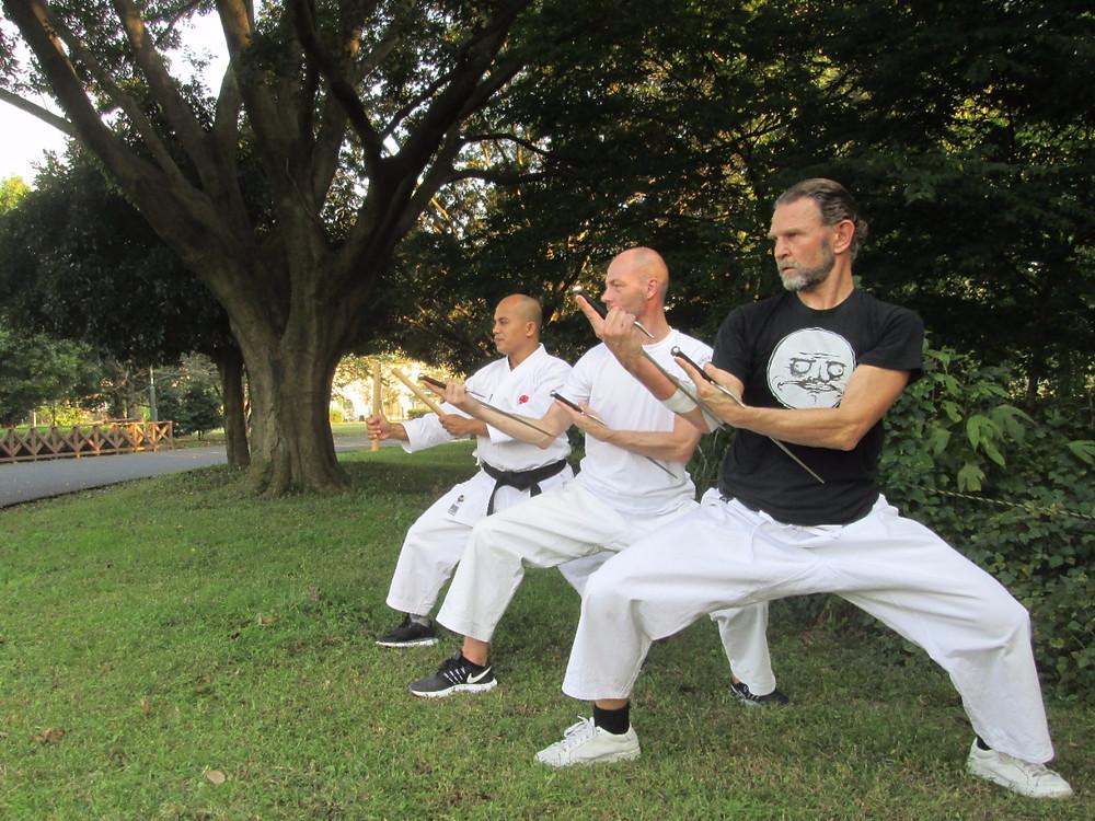 Practicing Kobudo at a park in Tokyo.