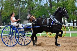 Express Ranch cart.jpg