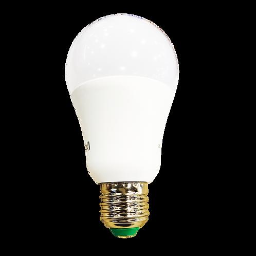 Nehora Premium Bulb