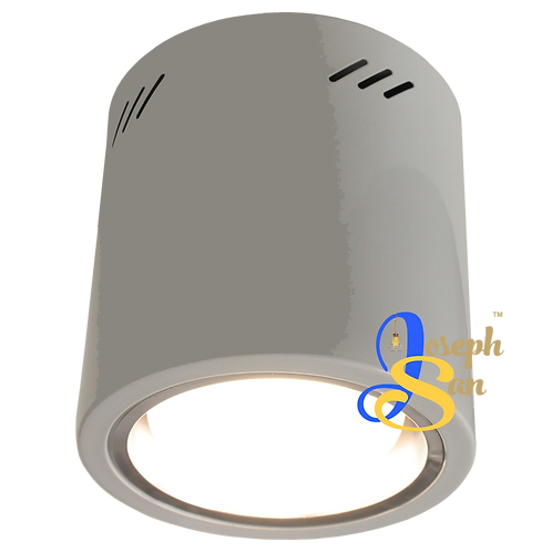 Cylindrical LED Down Lamp