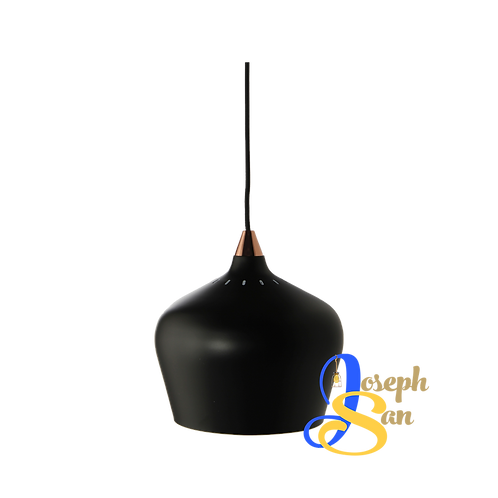 LARK ø250 Matt Black Pendant Lamp