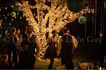 Love Using Mini Lights At Weddings!