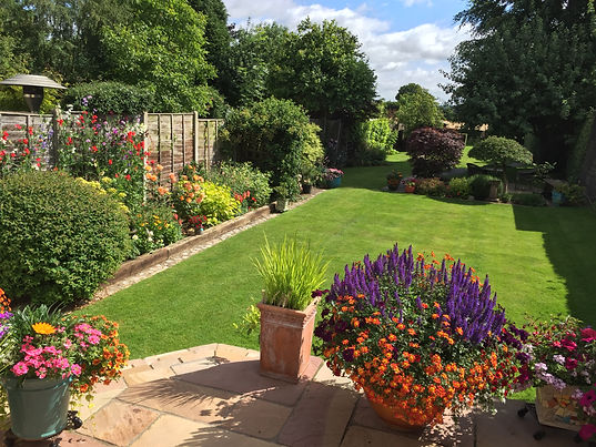 Local gardener providing a complete range of garden maintenance services to St Albans, Harpenden and the surrounding areas.