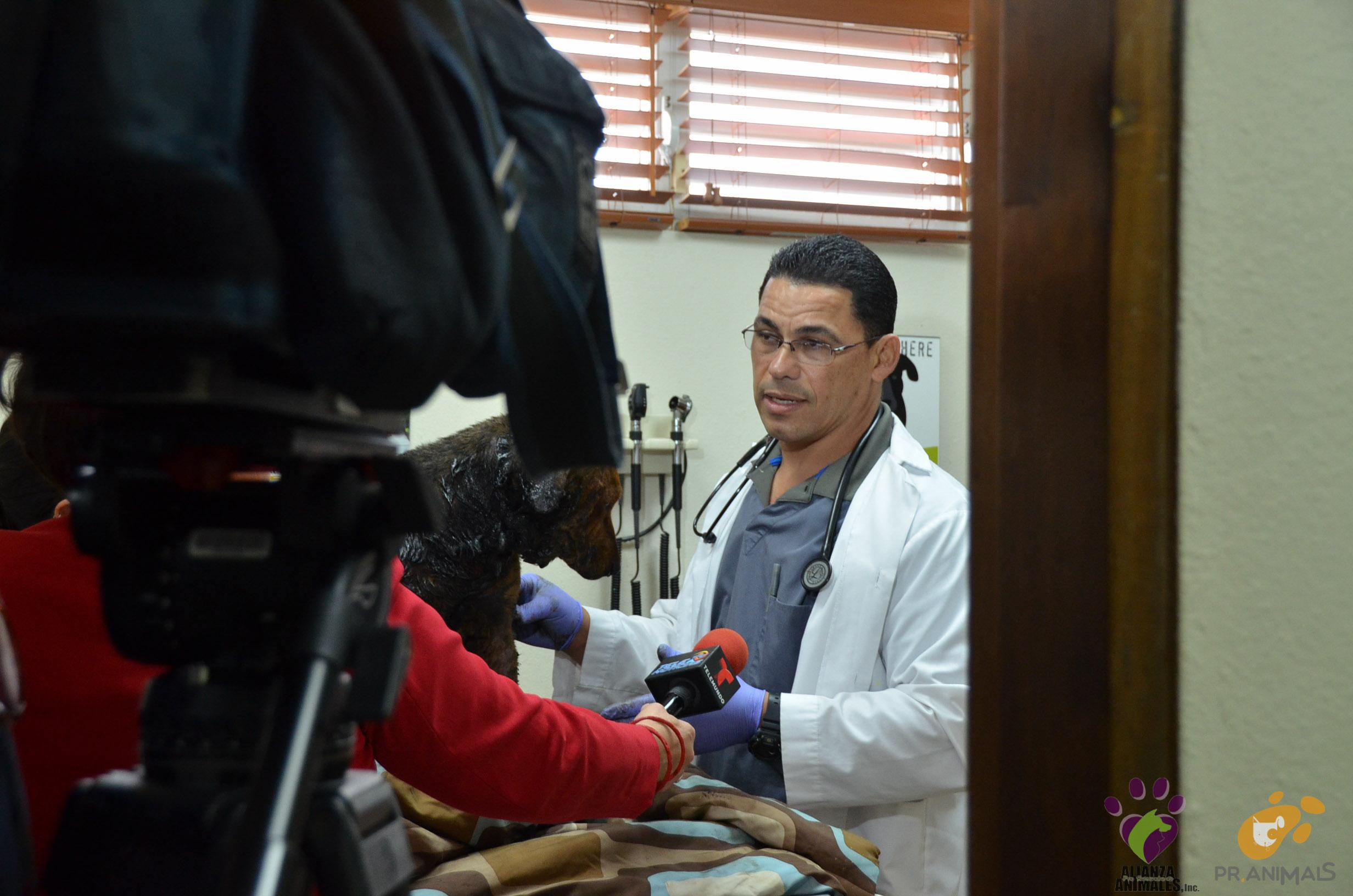 Entrevista con el Dr. Cruz