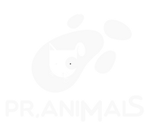 PR-Animals-logo-white-PNG.png