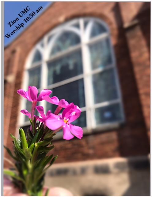 Zion Worship Building w flower 2018