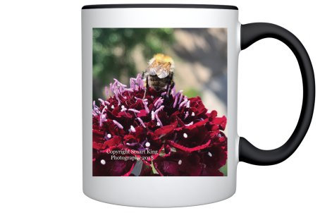 Bee Mug (Black and Crimson)