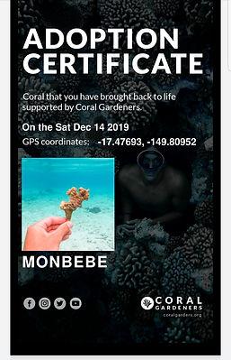coralmonbebe.jpg