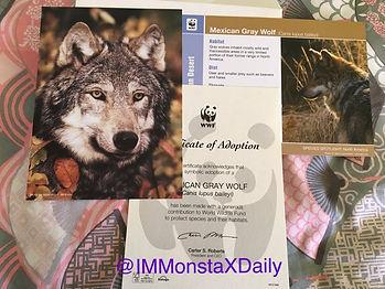 wolfIM 2.jpg