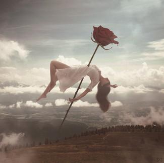 Float & Rose